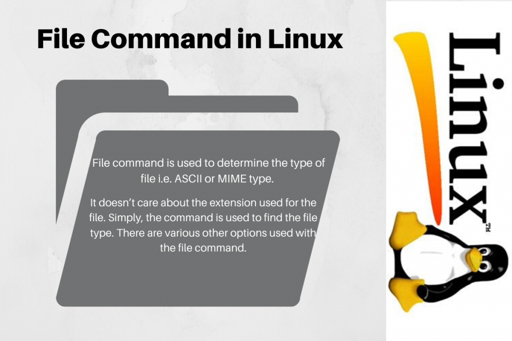 File Command In Linux