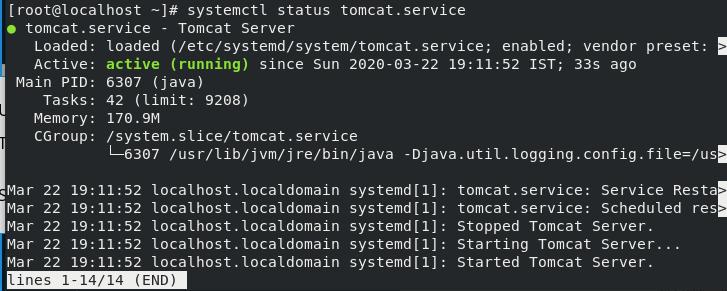Tomcat Status Step13