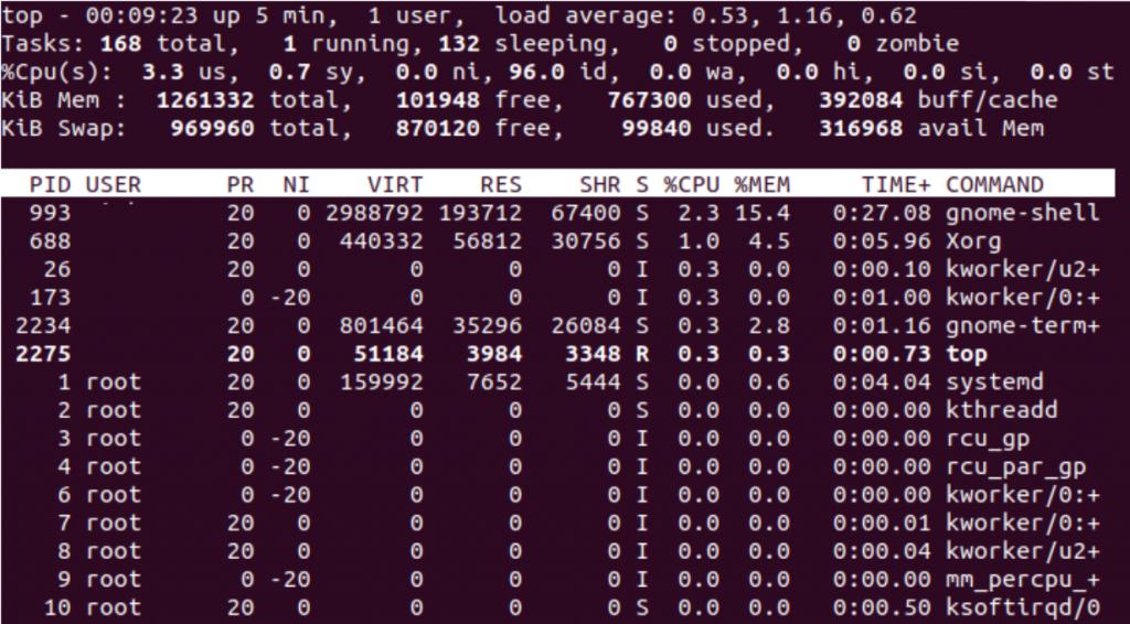 Top Command Output Default