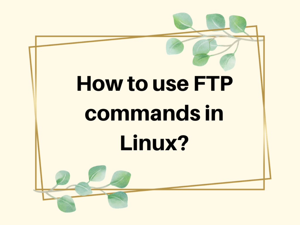 How To Use FTP Commands In Linux (1)