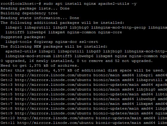 Install Nginx 1
