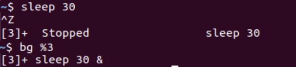 Bg Command in Linux basic