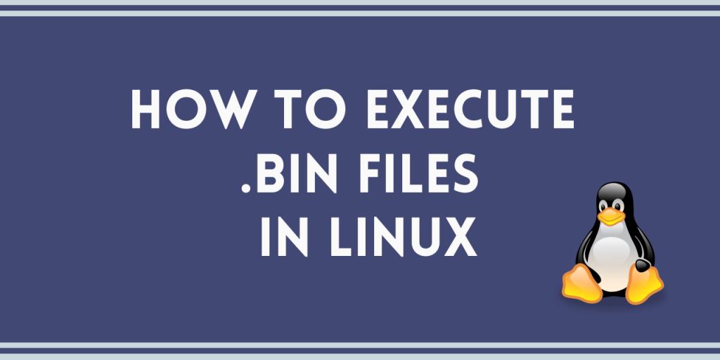Open a bin file in Linux