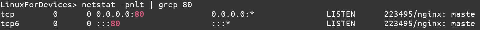 Nginx Server Check