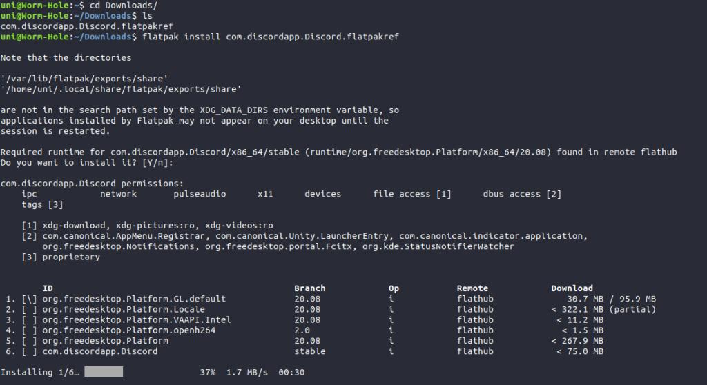 Installing Discord Flatpak