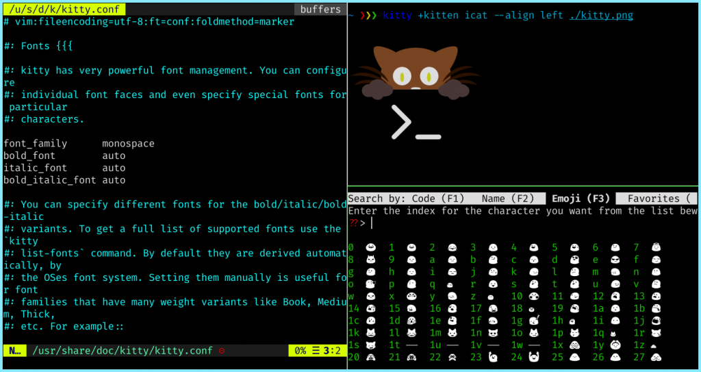 Kitty Terminal With Different Features