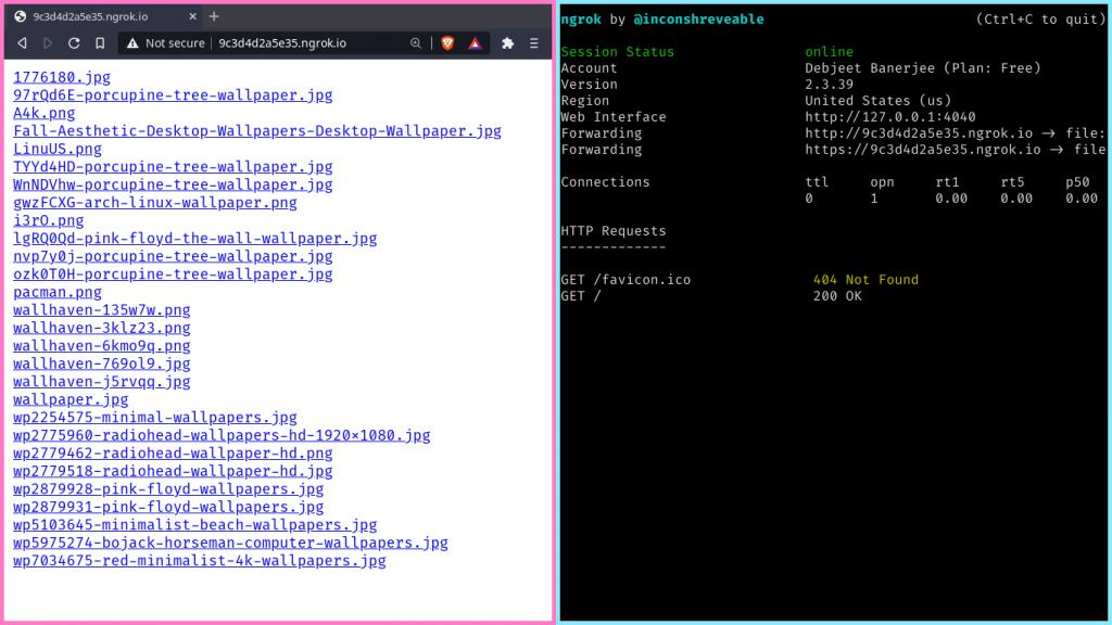 Serving Directories Over HTTP