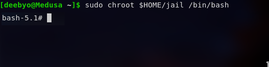 Chroot Env