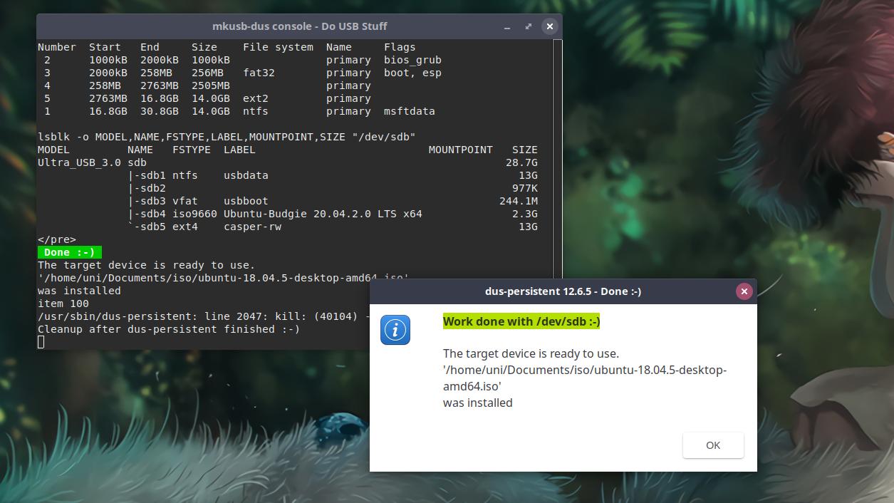 Ubuntu Persistence Created