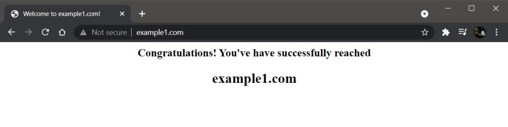 Example1.com